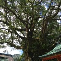 Photo taken at 天然記念物 那智の樟 by Jagar M. on 9/20/2015