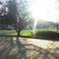 Das Foto wurde bei Rheinschafe von Samanta S. am 1/13/2013 aufgenommen