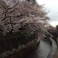Photo taken at Tetsugakudo Park by teriyaki on 3/30/2014