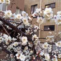 Photo taken at 仙台坂上交差点 by Takeshi T. on 2/26/2014