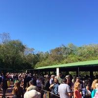 Foto tomada en Estación Cataratas [Tren Ecológico de la Selva] por Фарид М. el 9/20/2016
