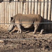 Photo taken at Rhinos at Hogle Zoo by Quarry on 1/13/2018