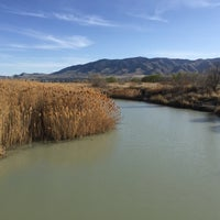 Photo taken at Utah Lake Inlet Park by Quarry on 4/10/2015