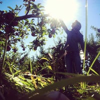 Photo taken at Honey Pot Hill Orchards by Stebs S. on 10/13/2012