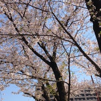 Photo taken at 東領公園 by Abiru K. on 4/2/2014