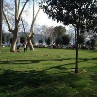 3/10/2013 tarihinde Kemal V.ziyaretçi tarafından Bebek Parkı'de çekilen fotoğraf
