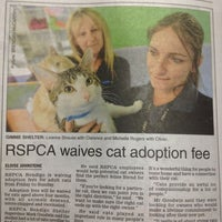 Photo taken at Rspca Bendigo by Caitlin W. on 11/23/2012