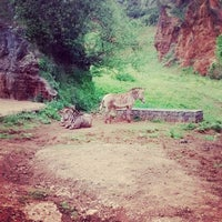 Photo taken at Cabarceno by Helmer G. on 5/6/2014