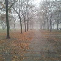 Photo taken at Pozsonyi park by Dora P. on 12/16/2012