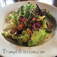 Photo taken at Trumpet Blossom Cafe by Gregory J. on 2/1/2014