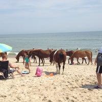 Photo taken at Assateague Island National Seashore (Maryland) by Gary I. on 8/21/2013