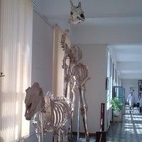 Photo taken at ATU Anatomi by Zaz Z. on 10/11/2012