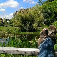 Photo taken at Botanischer Garten by Belinda on 6/30/2013