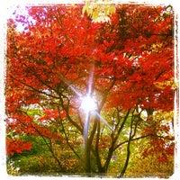 Photo taken at Botanischer Garten by Belinda on 10/22/2013