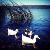 Das Foto wurde bei Sapanca Sahili von Deniz am 11/19/2012 aufgenommen