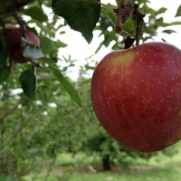 Photo taken at Applecrest Farm Orchards by Mike M. on 10/8/2012