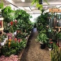Photo taken at Flowercraft Garden Center by Reyner T. on 3/18/2018