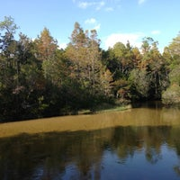 Photo taken at Turkey Creek Nature Trail by James A. on 10/13/2012