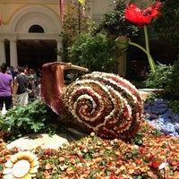 ... Photo Taken At Bellagio Conservatory U0026amp;amp; Botanical Gardens By  Leigh S. On ...