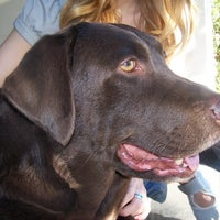 Photo taken at Quinta de Olivos Walking Trail & Dog Run by Hector M. V. on 7/23/2013