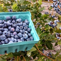 Photo taken at Pappy's Strawberry Patch by Tina B. on 6/1/2013
