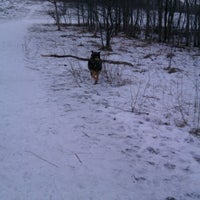 Photo taken at Rice Creek Dog Park by Craig B. on 1/13/2013