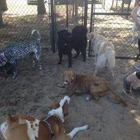 Photo taken at Ogden Park Dog Park by Eve on 5/31/2014