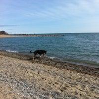 3/24/2013 tarihinde Beth C.ziyaretçi tarafından Kew-Balmy Beach'de çekilen fotoğraf