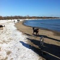 1/1/2013 tarihinde Beth C.ziyaretçi tarafından Woodbine Beach'de çekilen fotoğraf