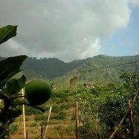Photo taken at nongkojajar - kebun apel - andonosari by Arief F. on 10/10/2012