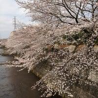 Photo taken at 向橋 by kahoru m. on 3/24/2013