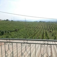 Photo taken at Erede di Chiappone Armando winery by Valentina C. on 6/22/2014