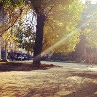 Photo prise au Парк КПI par Ilona I. le9/28/2012
