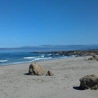Photo taken at MacKerricher State Beach by Jeremy L. on 8/15/2013