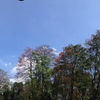 Photo taken at Parque del Este by Dayhana S. on 3/16/2013