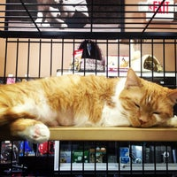 Photo taken at Pet Valu by Elizabeth T. on 5/9/2013