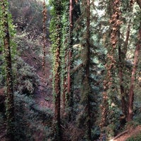 Photo taken at Joaquin Miller Park by Jennifer L. on 10/12/2013