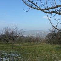 Photo taken at Winterbach by Ginta J. on 1/31/2014