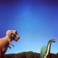 Photo prise au Dinosaur Valley State Park par Daniel le3/2/2013