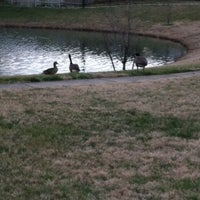 Photo taken at The Duck Pond by Penny N. on 2/3/2013