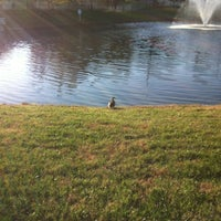 Photo taken at The Duck Pond by Penny N. on 11/10/2012