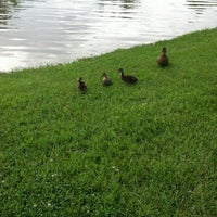 Photo taken at The Duck Pond by Penny N. on 6/10/2013