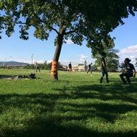 8/24/2014 tarihinde verus m.ziyaretçi tarafından Filozófusok kertje'de çekilen fotoğraf
