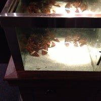 Photo taken at Red Lobster by Brent R. on 10/18/2012