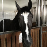 Photo taken at Horses Of Anastasia by Вадим К. on 7/11/2013