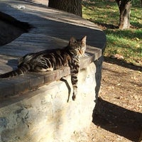11/1/2012 tarihinde Sinan Ç.ziyaretçi tarafından Yoğurtçu Parkı'de çekilen fotoğraf