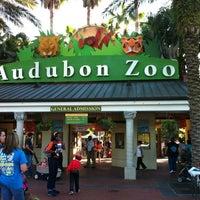 Photo taken at Audubon Zoo by Joanna E. on 10/20/2012