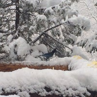 Photo taken at Lynn Britt Cabin by Alvaro G. on 3/2/2014