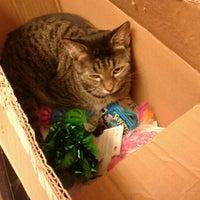 Photo taken at PetSmart by Gloria W. on 10/21/2012