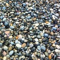 Foto tirada no(a) Torrey Pines State Beach por Joshua B. em 2/4/2013